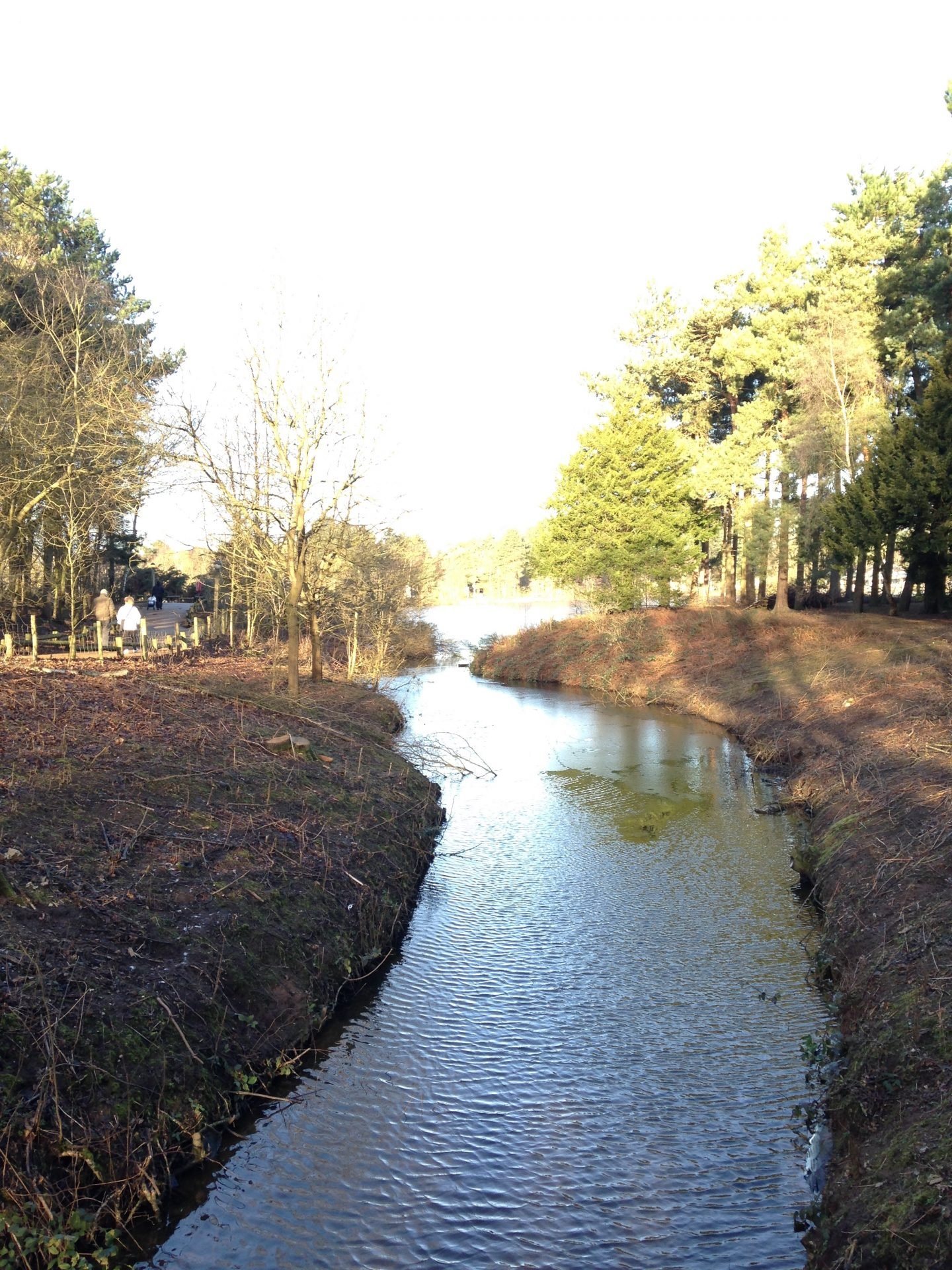 The winding river and woodland walks at Center Parcs