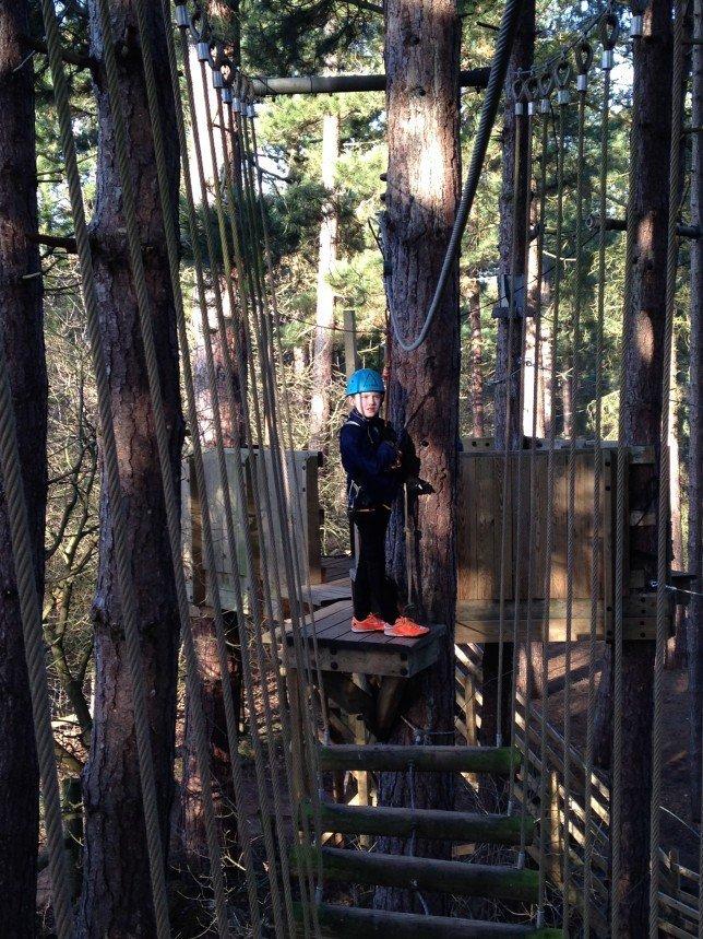 Aerial Adventure Tree Trekking At Center Parcs
