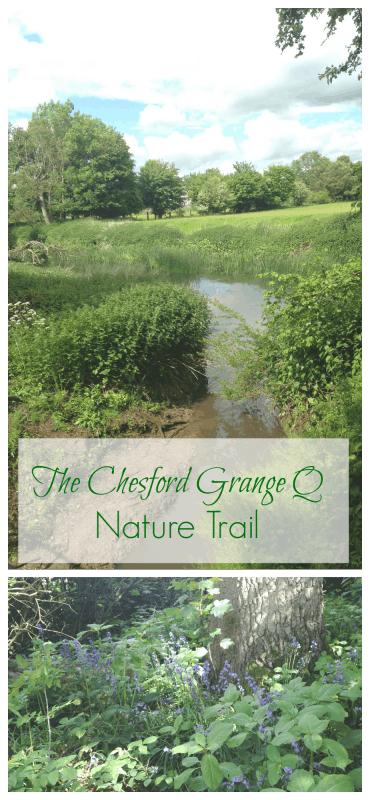 Nature Trail Pin