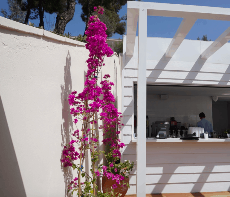 A Postcard From Ikos Oceania Day 4 a