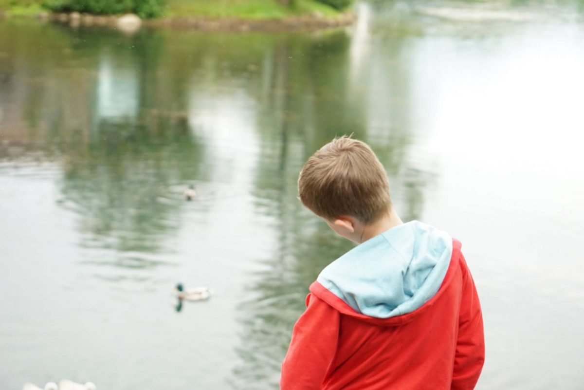 A Postcard From Brompton Lakes