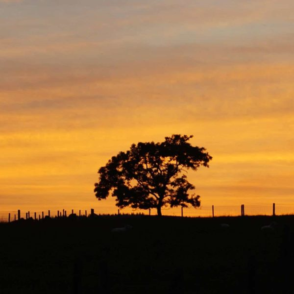 A Lancashire Sunset My Sunday Photo