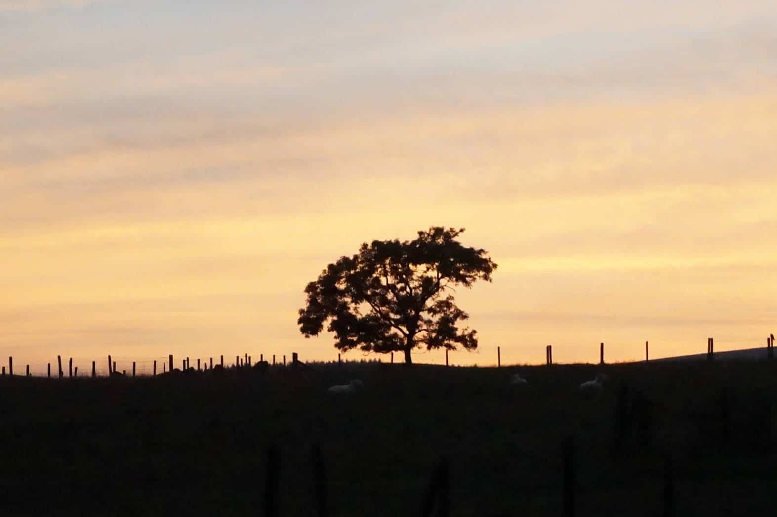 A Lancashire Sunset