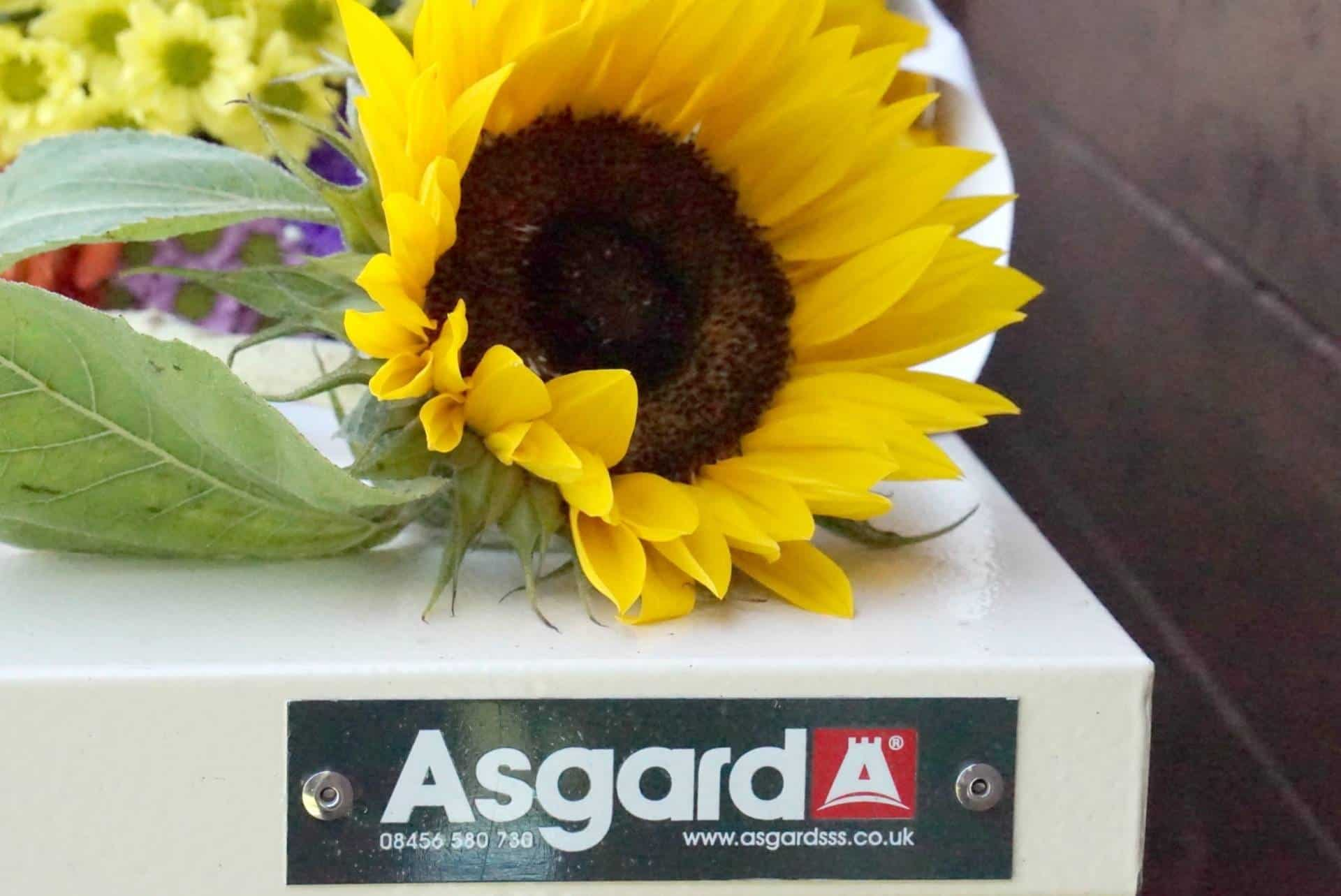 Storing Summer Away With Asgard Garden Sheds
