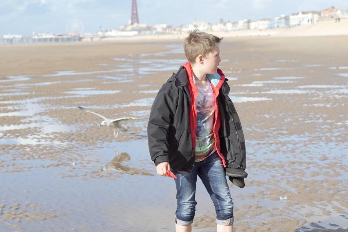 My Sunday Photo, A Walk On The Beach
