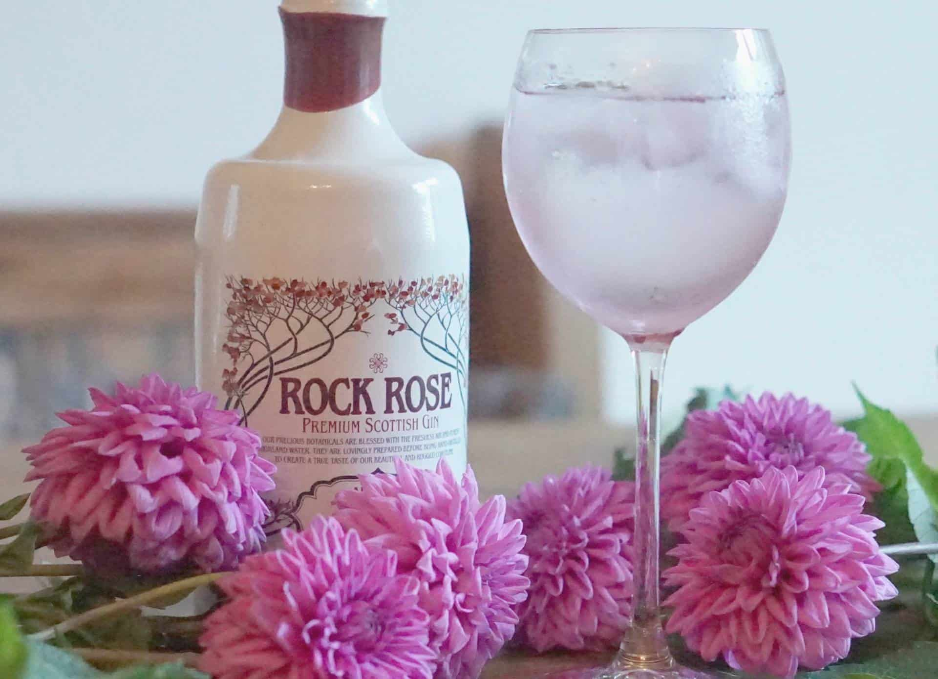 My Weekly Round Up And Growing Up,Discovering Gin, And My Current Gin Faves