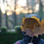 My Sunday Photo A Winters Walk