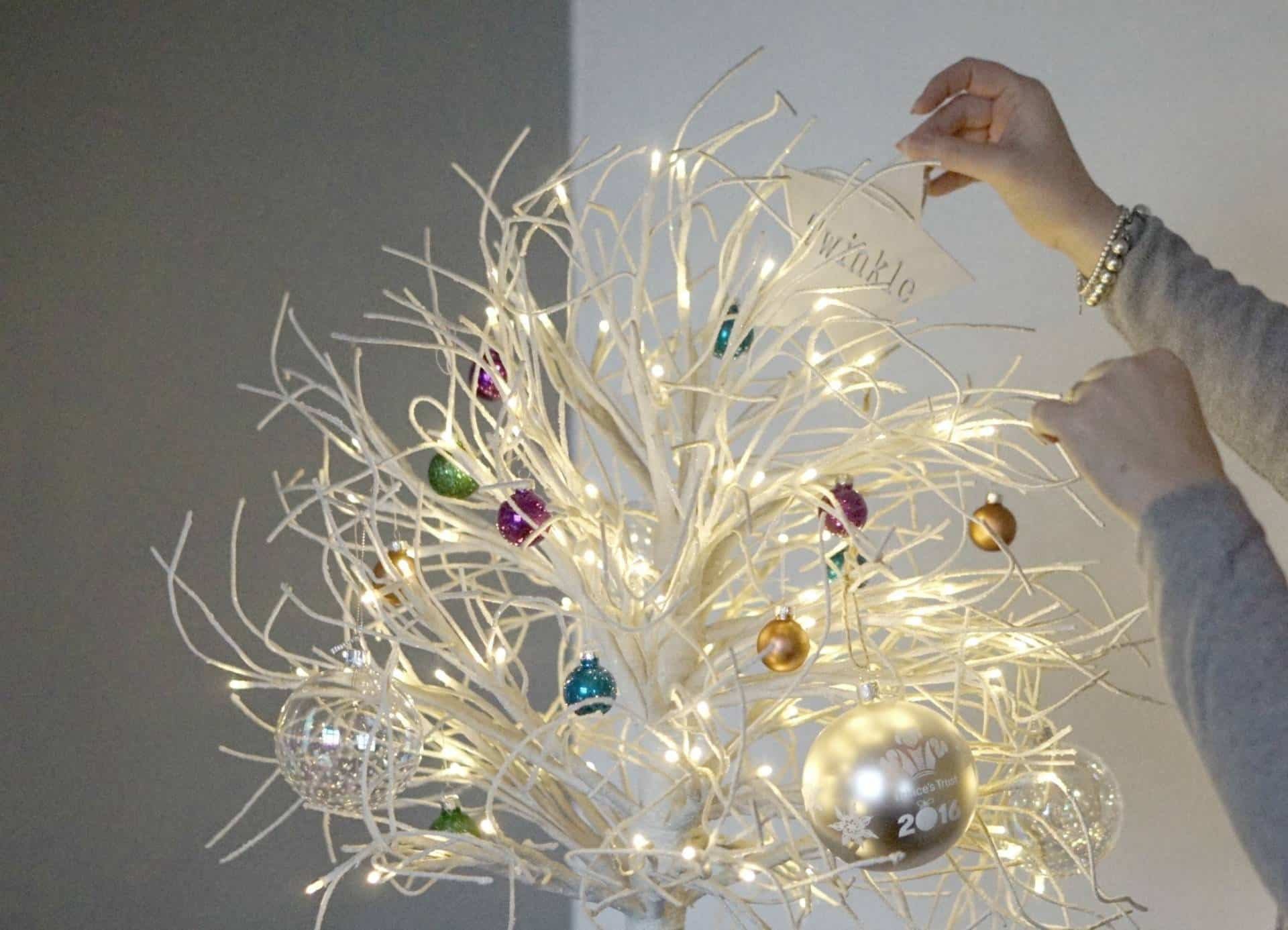 Twinkle And Brights with Homesense and Princes Trust