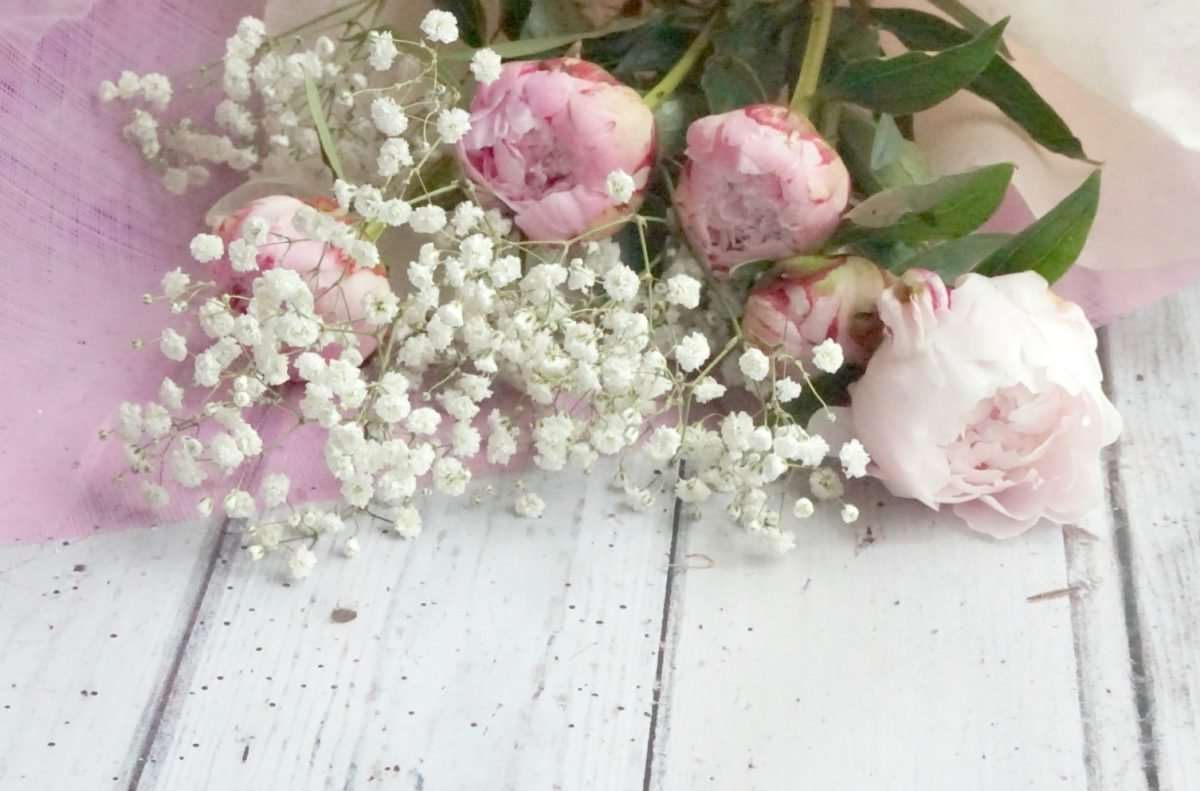 Peonies are so pretty, little loves www.extraordianrychaos.com