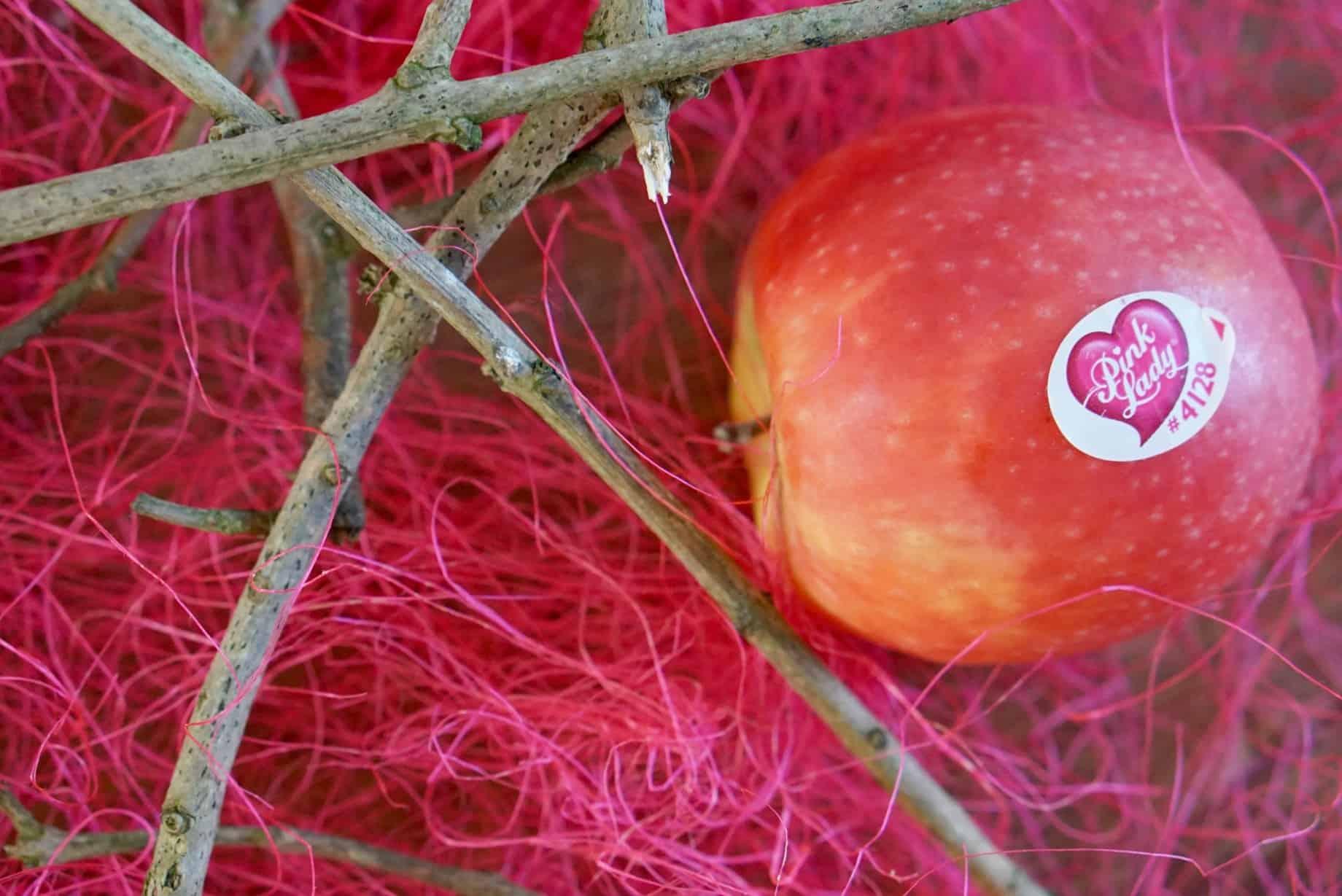 Pink Lady Apples www.extraordinarychaos.com