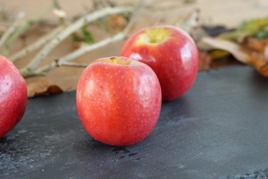 Recipe for poison apples www.extraordinarychaos.com