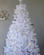 White Colorado Spruce Christmas Tree