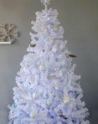 White Colorado Spruce Christmas Tree