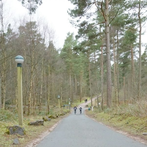 Activities For Teenagers A Center Parcs Whinfell Forest