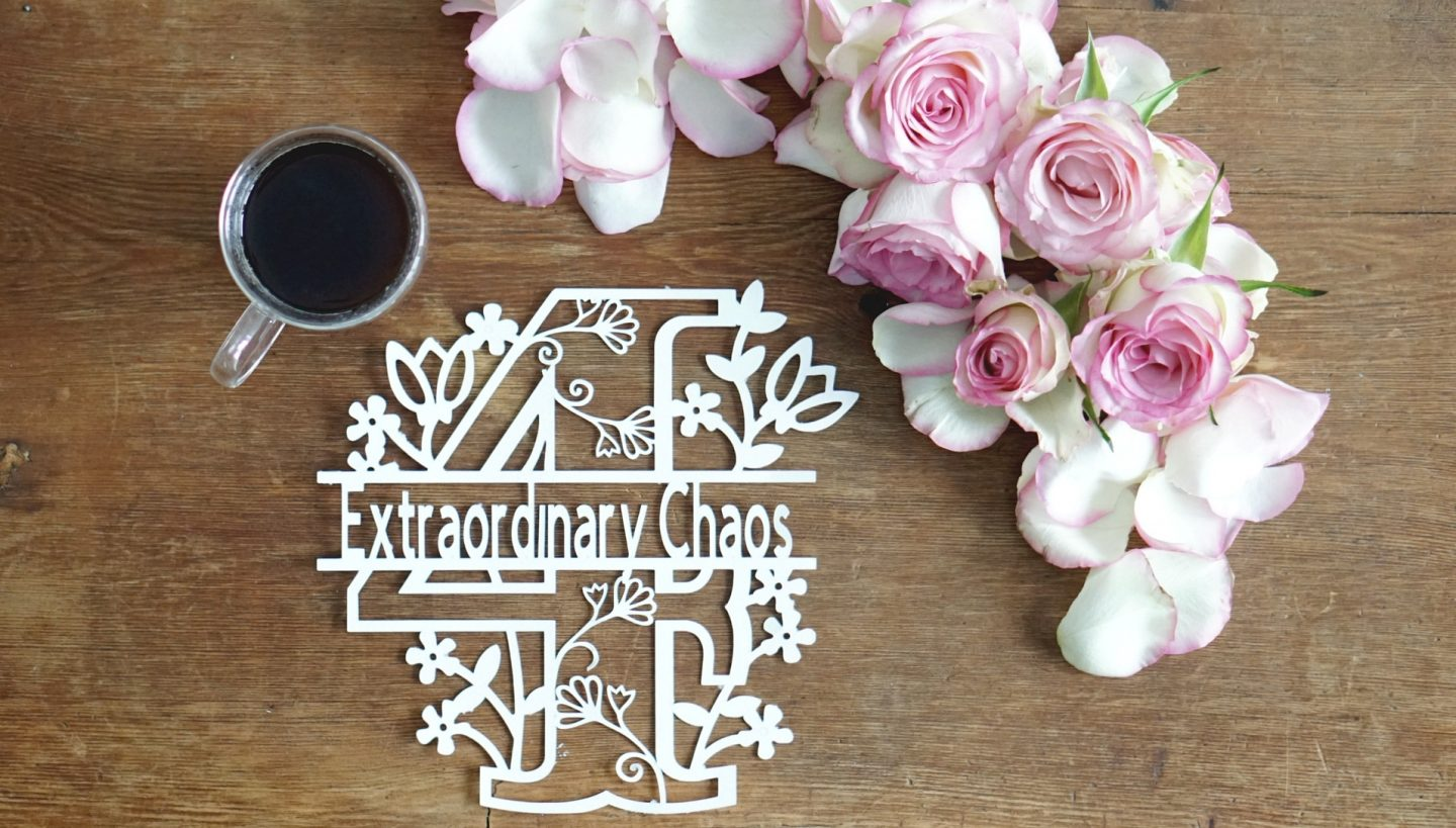 Extraordinary Chaos Family, Travel , Clafting and Lifestyle blog ,Cricut paper cutting art projects  www.extraordinarychaos.com