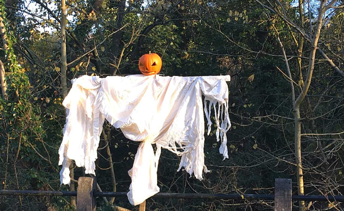 Pumkin Scarecrow in Roughlee