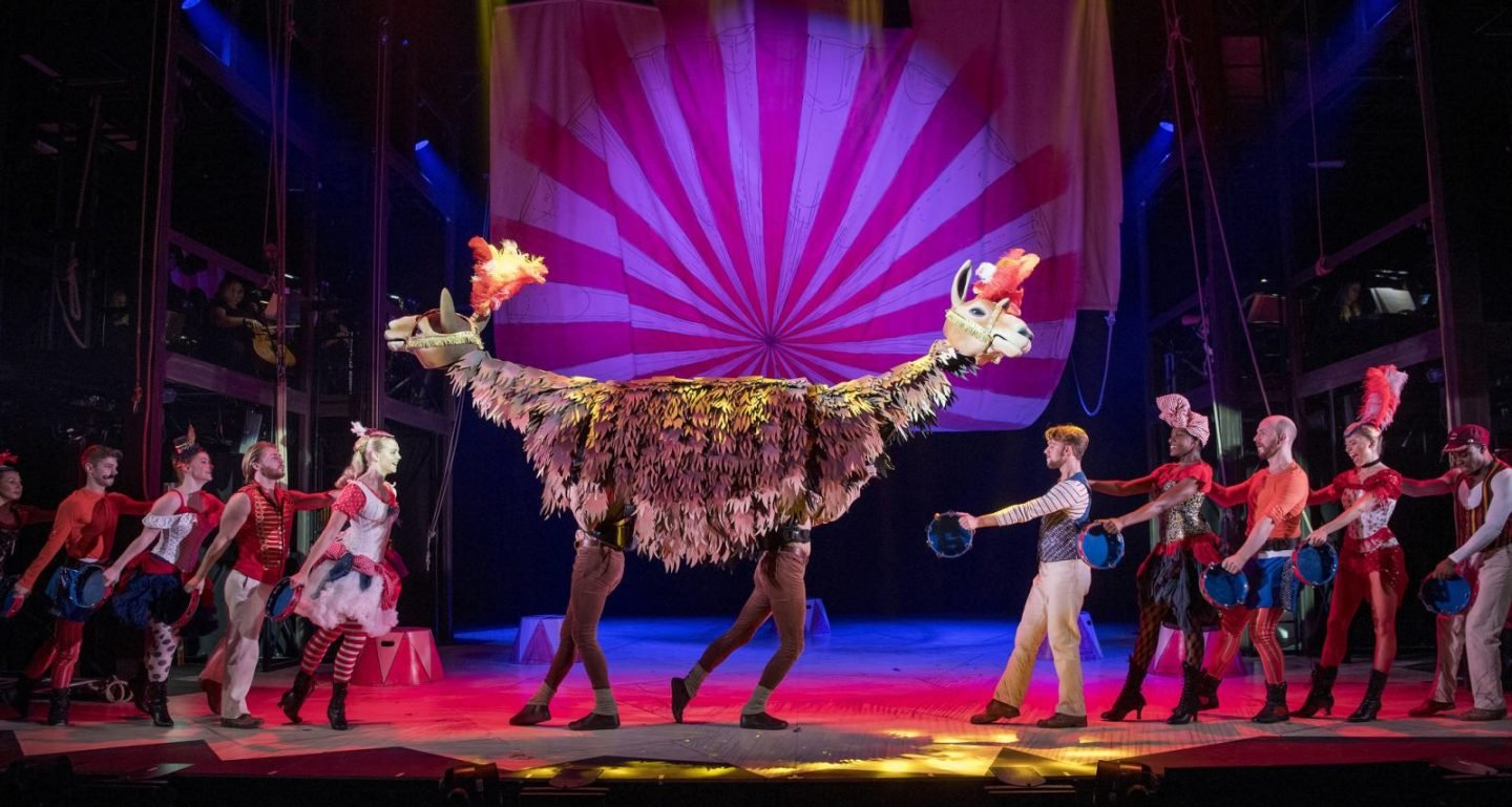 Doctor Dolittle Manchester Review