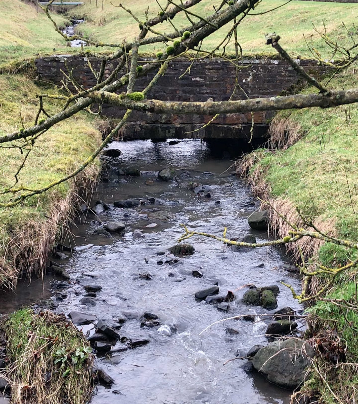 River in the Lancashire Countryside