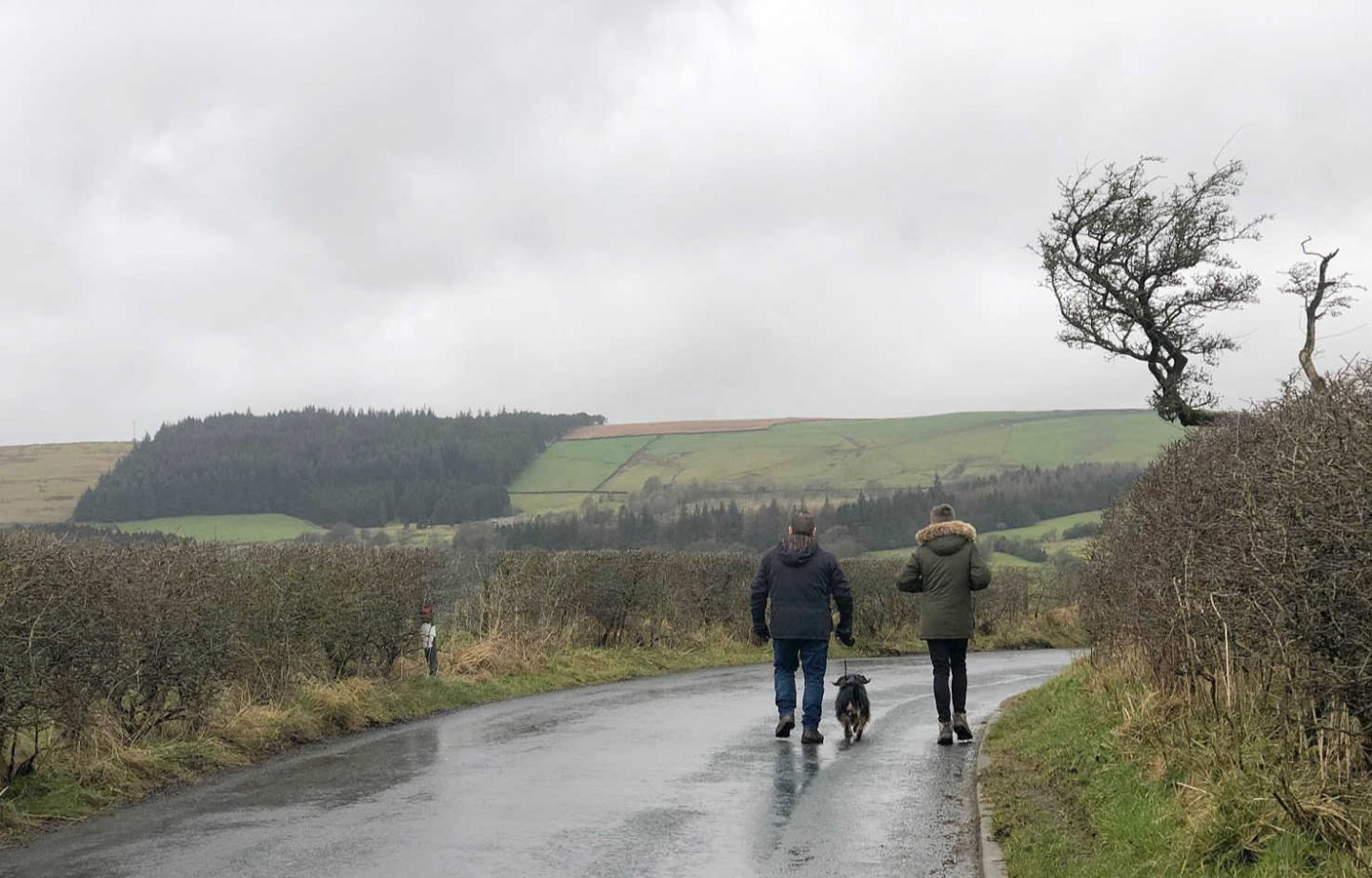 Family walking in the country