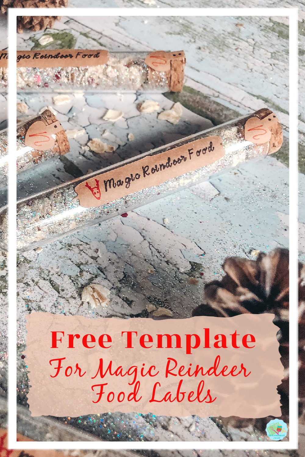 Free label and bottle stop templates for Magic Reindeer Food for Christmas