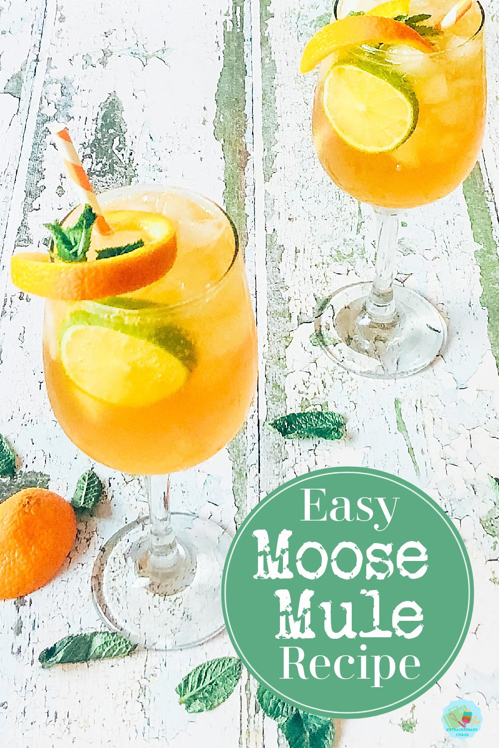 Refreshing Moose Mule Cocktail Recipe, and easy recipe and a great twist on the traditional Moscow Mule perfect for cocktail parties, summer and winter cocktails