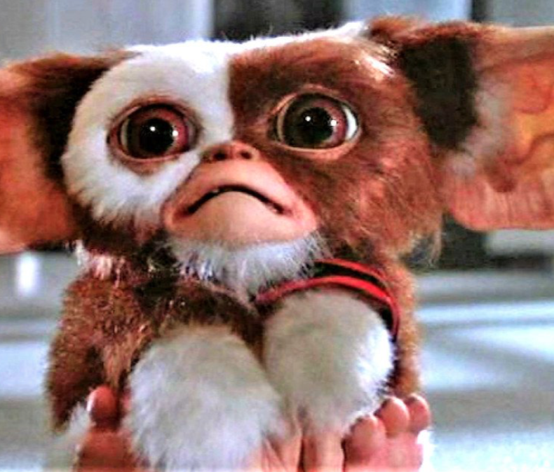 Gremlins (1984) is a great family Halloween Movie