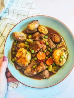 Slow cooker beef and ale stew recipe with slow cooker dumplings