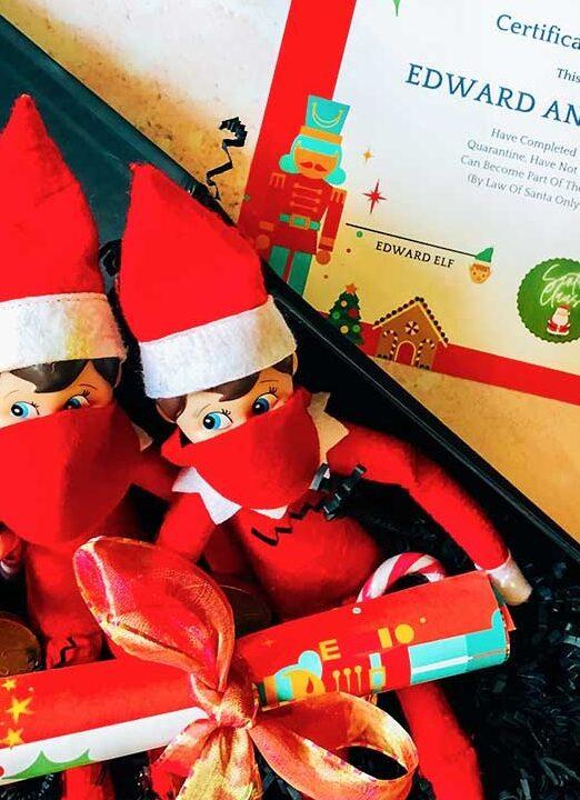 Elf shelf quarantine kit