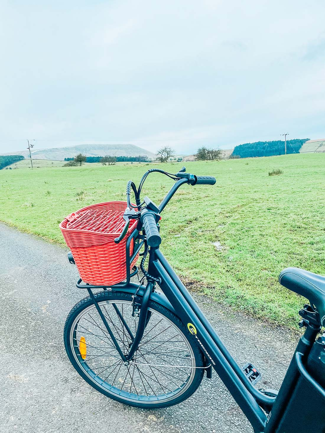 The E-Trends City Electric Bike With A Basket